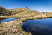 Blue tarns among the golden tussock, Mt Burns, Fiordland