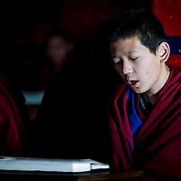 Dedication of a Monk DAWA TSUKPHUD reading the holy book. A religious ceremony at the Tibetan YungDrung Bon Monastery at Dolanji.