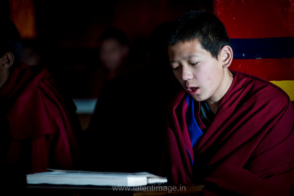 Dedication of a Monk DAWA TSUKPHUD reading the holy book. A religious ceremony at the Tibetan YungDrung Bon Monastery at Dolanji.