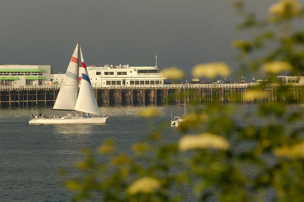 Sail Boat and Santa Cruz Pier, Lighthouse Field State Park, Santa Cruz, California, United States of America