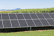 solar panel energy source in sugar cane field in Bloomsbury, Queensland, Australia