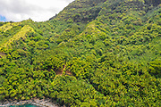 Tahuata, Marquesas; French Polynesia; South Pacific