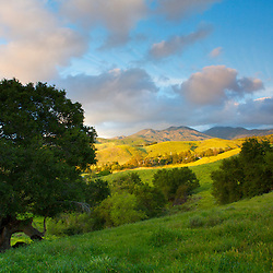 Grassy hills and clouds at sunset. Orange County, CA.