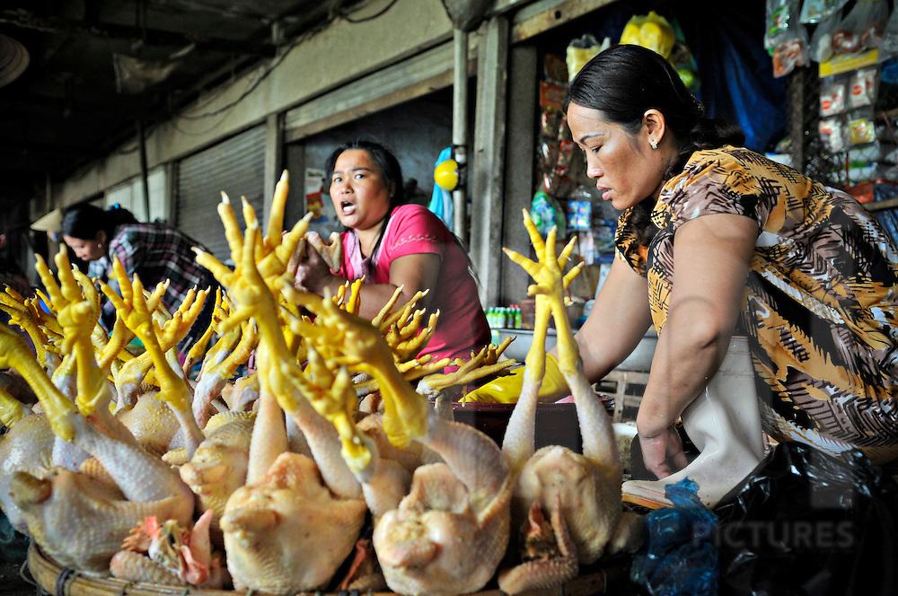 Vietnamese women sell chickens at a Hue market, Vietnam, Southeast, Asia