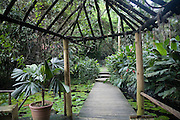 Raymond Burr, Garden of the Sleeping Giant, Nausori, Viti Levu, Fiji, Melanesia, South Pacific