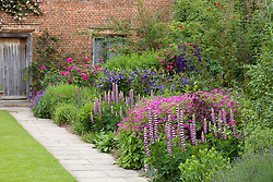 The Purple Border at Sissinghurst Castle Garden