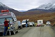 Photographers, Park Ranger, Denali Park Road, Denali National Park, Alaska