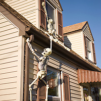 Haunted Skeletons Climb House