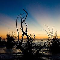 Beer Can Island (Greer Island) Long Boat Key, Florida