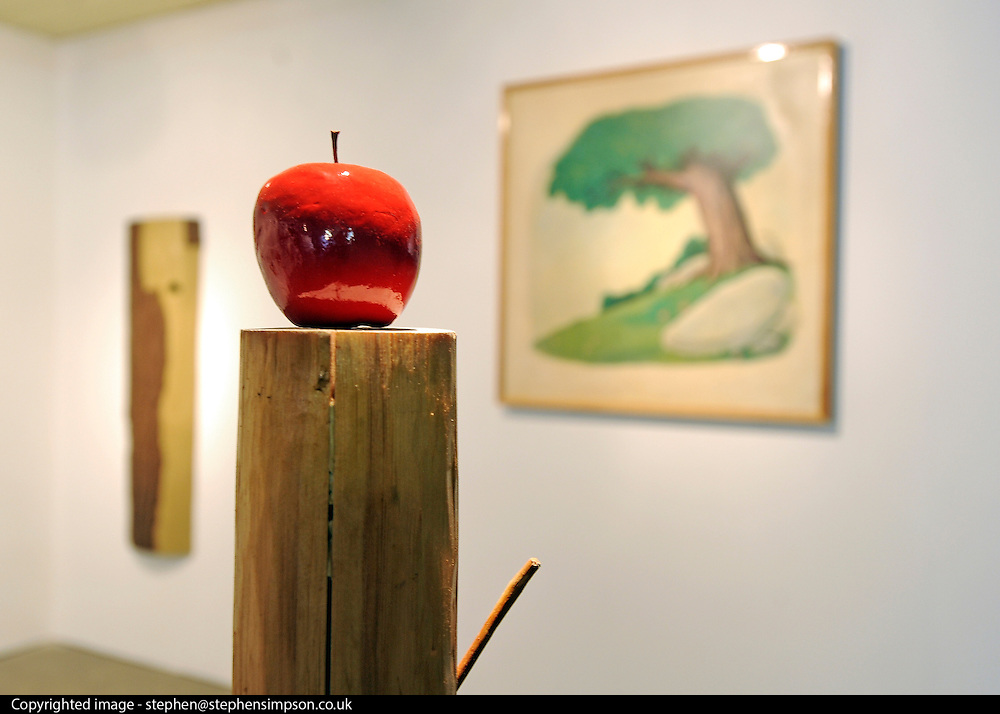 © licensed to London News Pictures. LONDON, UK.  22/06/11. Work by Justin Larkin entitled 'Apple and Tree' Students present their work at The Royal College of Art's Fine Art Graduate Show 2011. The show runs from 24th June-3rd July 2011. Mandatory Credit Stephen Simpson/LNP