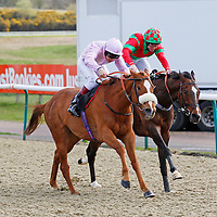 Bold Ring and Marc Halford winning the 4.55 race