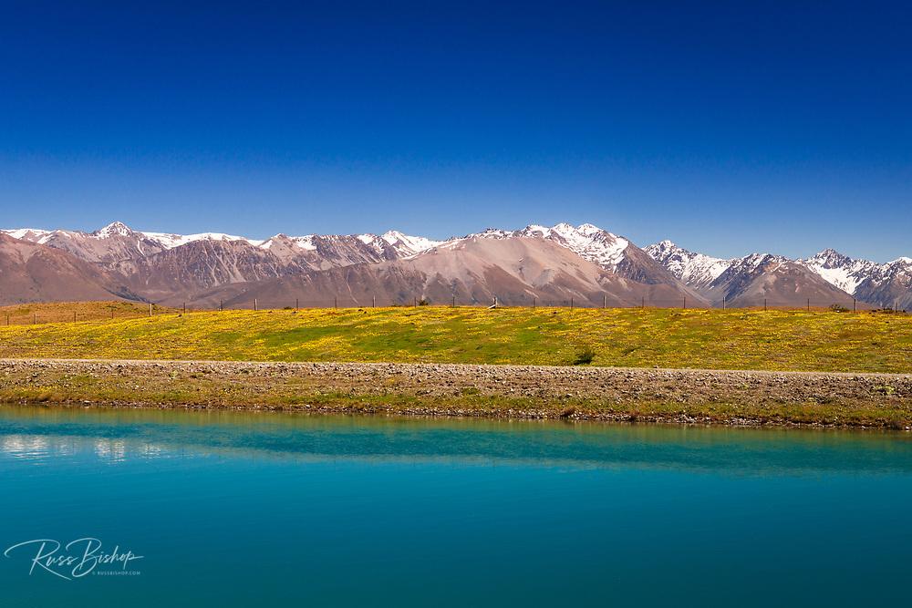 The Southern Alps from the Tekapo Canal, Lake Tekapo, Canterbury, South Island, New Zealand