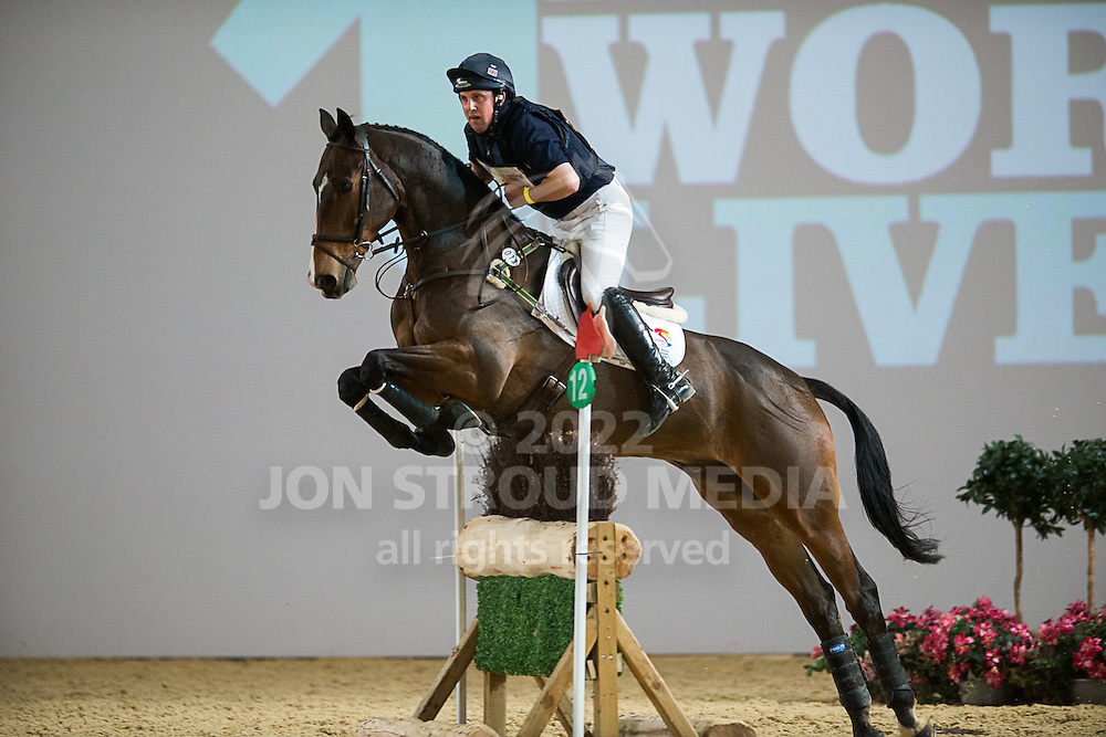 Matthew Wright (GBR) & If You Want II - XC - Express Eventing - Horse World Live - ExCel London - 17 November 2012
