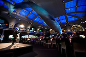Institutional Investor's 40th Anniversary Gala