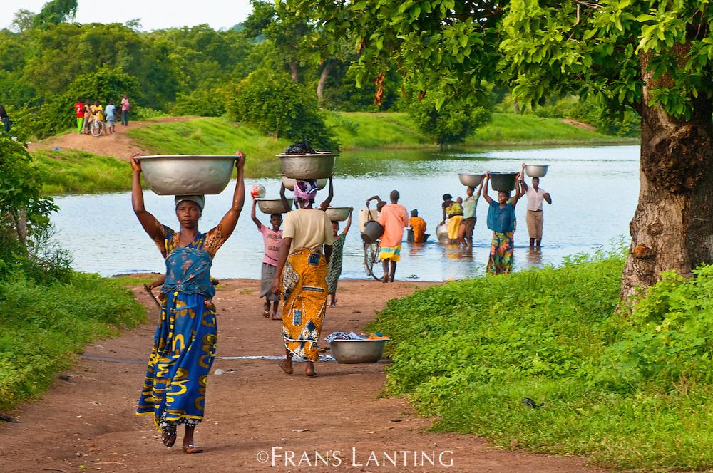Women fetching water from village pond, Wechiau, Ghana