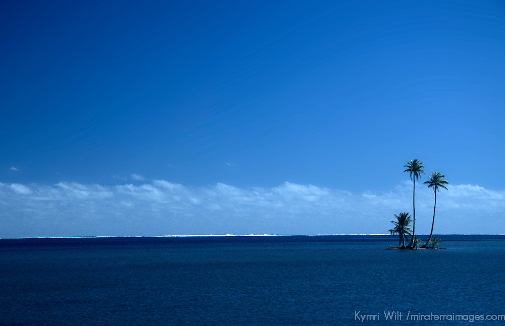 Oceania, South Pacific, French Polynesia, Tahiti. Palm trees seem to grow from the ocean on this islet.
