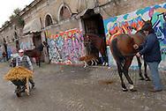 Roma, 13/11/2006: Campo Boario, le stalle dei vetturini - horses stables
