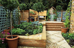 Paved kitchen garden with changing levels. Raised vegetable bed with outdoor kitchen in the distance. Standard bay trees.