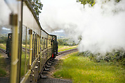 ABERYSTWYTH, WALES, UK 17TH AUGUST 2019 - Person looking out of window of Vale of Rheidol steam train railway with steam cloud vapour trail and rural woodland countryside background.