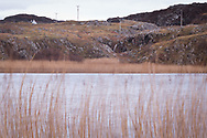 Reeds on Loch an Aigeil in Assynt, northwest Scotland, with a little Scottish cottage tucked out of the wind on the hillside above.