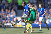 Romelu Lukaku (Everton) during the Barclays Premier League match between Everton and Norwich City at Goodison Park, Liverpool, England on 15 May 2016. Photo by Mark P Doherty.