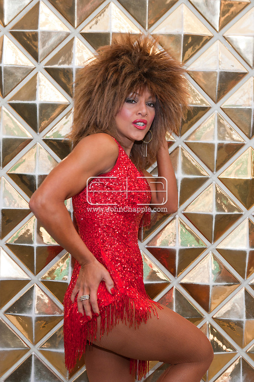 24th February 2011. Las Vegas, Nevada.  Celebrity Impersonators from around the globe were in Las Vegas for the 20th Annual Reel Awards Show. Pictured is Samira as Tina Turner.  Photo © John Chapple / www.johnchapple.com..