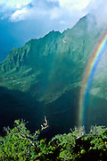 Rainbow over green cliffs of Kalalau Valley Overlook, Kauai, Hawaii, USA. published May 2002 by Garden Isle Disposal Inc, a recycling and disposal company in Lihue, Kauai.