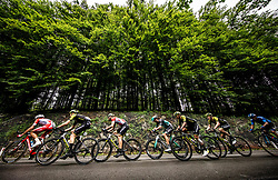 Peloton  during 5th Stage of 26th Tour of Slovenia 2019 cycling race between Trebnje and Novo mesto (167,5 km), on June 23, 2019 in Slovenia. Photo by Vid Ponikvar / Sportida