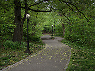 Path up to the Great Hill in Central Park