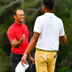 Apr 14, 2019; Augusta, GA, USA; Tiger Woods (left) and Tony Finau (right) shake hands on the 18th green during the final round of The Masters golf tournament at Augusta National Golf Club. Photo : Michael Madrid / SUSA / Icon Sport
