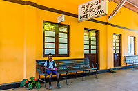 Heeloya train station, Train trip through the scenic mountains featuring many tea plantations between Nuwara Eliya (Nanu Oya) to Ella, Sri Lanka.