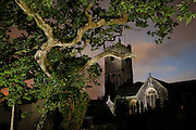 Meavy Oak and the Church behind in Meavy, Devon, Southern Dartmoor - http://www.legendarydartmoor.co.uk/meavy_royal_oak.htm