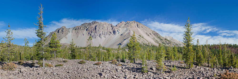 The eastern slope of Mt. Lassen rises out of a forest of pine, Lassen National Park, California