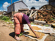 03 AUGUST 2015 - SANKHU, NEPAL:  A woman whose home was destroyed by the earthquake dries rice in front of the rubble of her home in Sankhu, a community about 90 minutes from central Kathmandu. The Nepal Earthquake on April 25, 2015, (also known as the Gorkha earthquake) killed more than 9,000 people and injured more than 23,000. It had a magnitude of 7.8. The epicenter was east of the district of Lamjung, and its hypocenter was at a depth of approximately 15 km (9.3 mi). It was the worst natural disaster to strike Nepal since the 1934 Nepal–Bihar earthquake. The earthquake triggered an avalanche on Mount Everest, killing at least 19. The earthquake also set off an avalanche in the Langtang valley, where 250 people were reported missing. Hundreds of thousands of people were made homeless with entire villages flattened across many districts of the country. Centuries-old buildings were destroyed at UNESCO World Heritage sites in the Kathmandu Valley, including some at the Kathmandu Durbar Square, the Patan Durbar Squar, the Bhaktapur Durbar Square, the Changu Narayan Temple and the Swayambhunath Stupa. Geophysicists and other experts had warned for decades that Nepal was vulnerable to a deadly earthquake, particularly because of its geology, urbanization, and architecture.    PHOTO BY JACK KURTZ