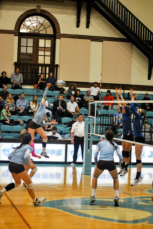 10/18/2013 - Cousens Gym, Tufts Medford campus - Tufts receives a net shot during the volleyball home game where Tufts defeats Hamilton 25-12. Caroline Geiling / The Tufts Daily