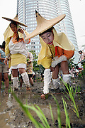 Tokyo residents dressed in traditional garb from the Ise region of Japan join in a rice-planting event on the roof top of a seven story building in the Roppongi Hills urban development district of downtown Tokyo. The roof top rice field, which was inaugurated in 2003 and was inspired by a German biotop project at the Bonn Art Exhibition Hall in Bonn Germany. It is part of efforts by organizers Mori Corp. to re-acquaint urban dwellers with traditional culture.