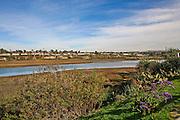 Newport Back Bay