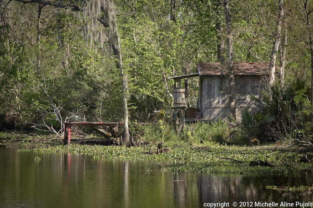 Cajun cabin in the Barataria Swamp area near New Orleans, LA
