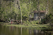 Cajun cabin in the Barataria Swamp area near New Orleans, LA