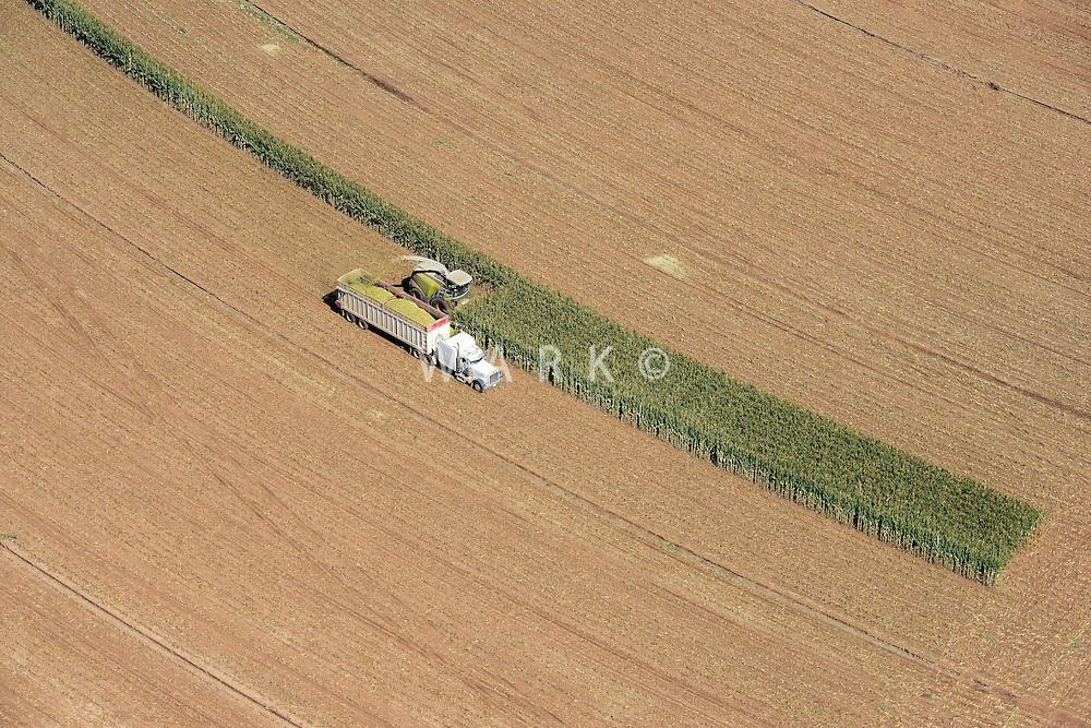 Corn harvest near Amarillo, Texas.  Sept 2013. 84060