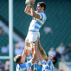 Argentina in the lineout