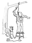 (A man trying to hang himself from a tree has tied his dog to a stool he is standing on and throws a stick for his dog)