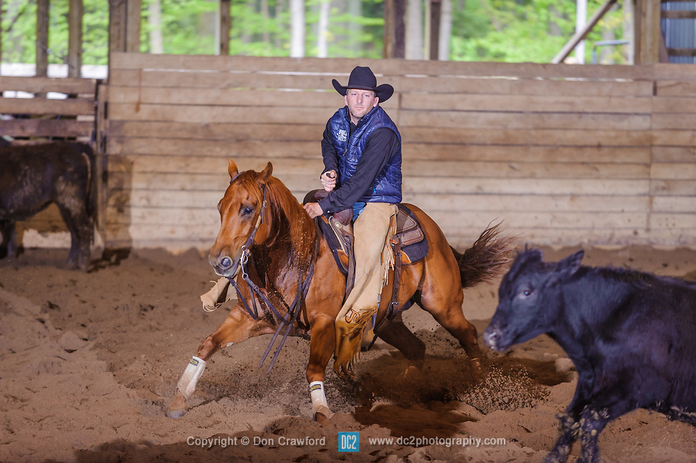May 21, 2017 - Minshall Farm Cutting 4, held at Minshall Farms, Hillsburgh Ontario. The event was put on by the Ontario Cutting Horse Association. Riding in the Non-Pro Class is John Martin on Ray Too Smart owned by the rider.