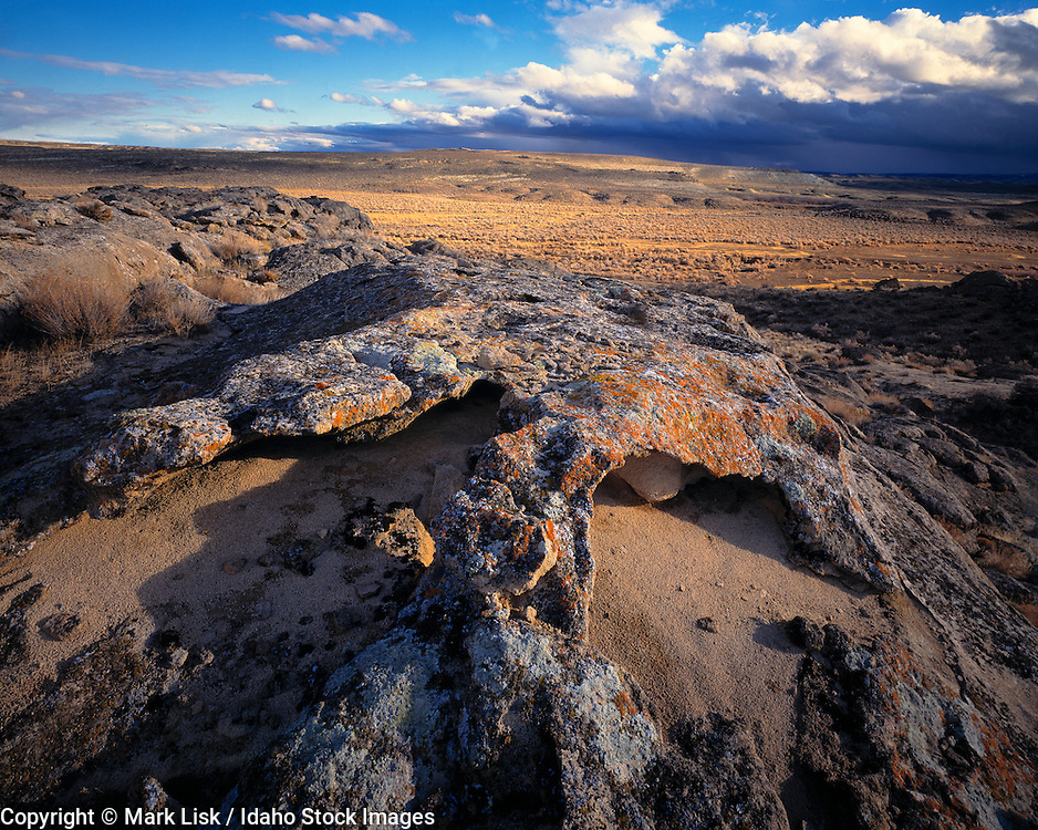 The harsh desert environment of South west Idahos Owyhee, Canyonlands,  Desert, Idaho.
