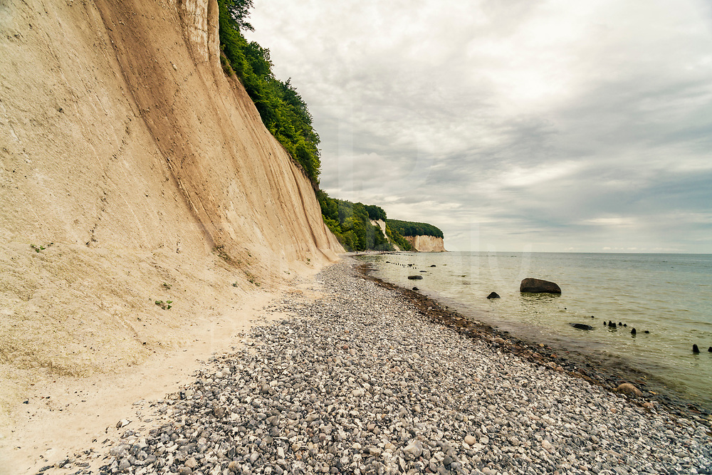 Chalk cliff in Jasmund national park and nature reserve, famous for its chalk cliffs which are the largest in Germany