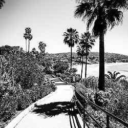 Laguna Beach Heisler Park black and white picture in high resolution. Heisler Park is an oceanside park along the Pacific Ocean in Laguna Beach California. Copyright © 2012 Paul Velgos with All Rights Reserved.