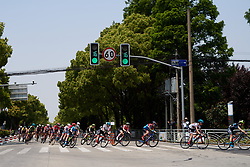 The peloton speed around a corner at Tour of Chongming Island 2019 - Stage 3, a 118.4 km road race on Chongming Island, China on May 11, 2019. Photo by Sean Robinson/velofocus.com