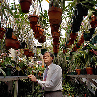 Keith Clayton looks at the Orchids in his greenhouse at his home. Clayton has been growing orchids for about 8 years.