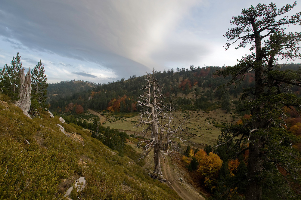 Greece, Pindos Mountains, Pindos NP, Valia Calda Landscape