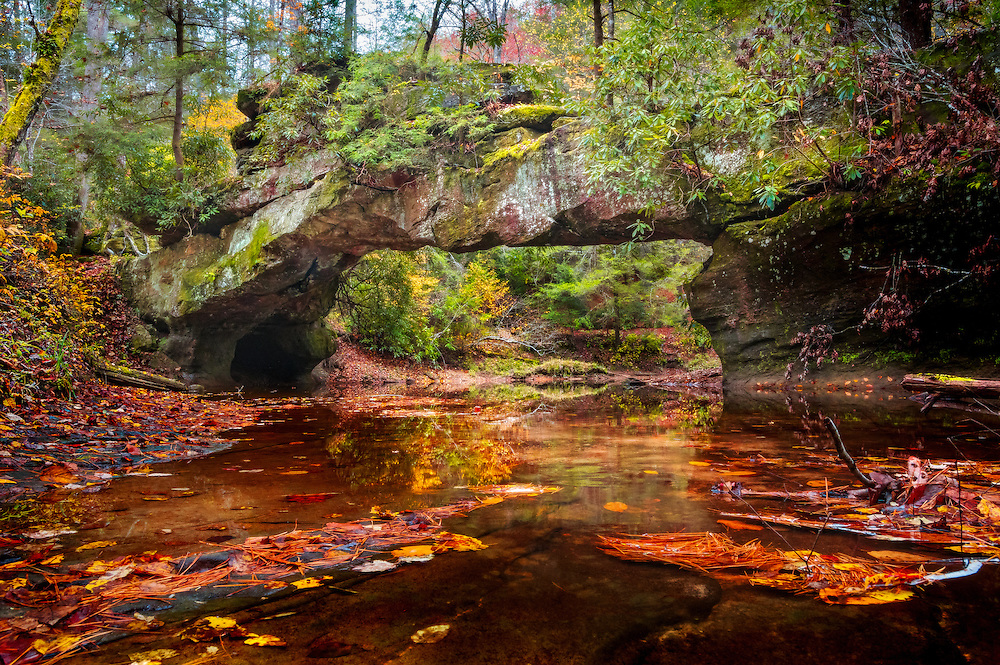 The colors of autumn fill the creek as it flows under the natural arch, Rock Bridge, in Kentucky's Red River Gorge.